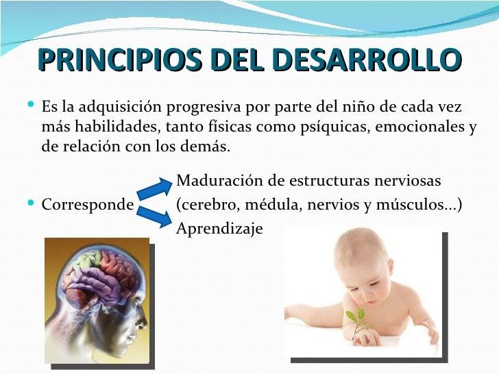 Desarrollo psicomotor Slide 2