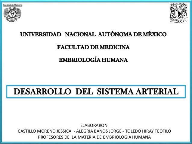 UNIVERSIDAD NACIONAL AUTÓNOMA DE MÉXICO FACULTAD DE MEDICINA EMBRIOLOGÍA HUMANA ELABORARON: CASTILLO MORENO JESSICA - ALEG...