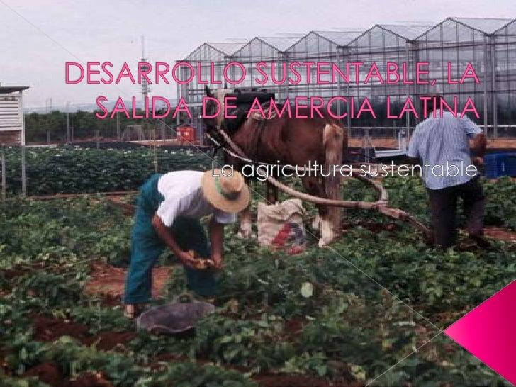 DESARROLLO SUSTENTABLE, LA SALIDA DE AMERCIA LATINA<br />La agricultura sustentable<br />