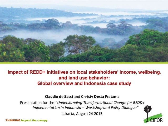 THINKING beyond the canopy Impact of REDD+ initiatives on local stakeholders' income, wellbeing, and land use behavior: Gl...