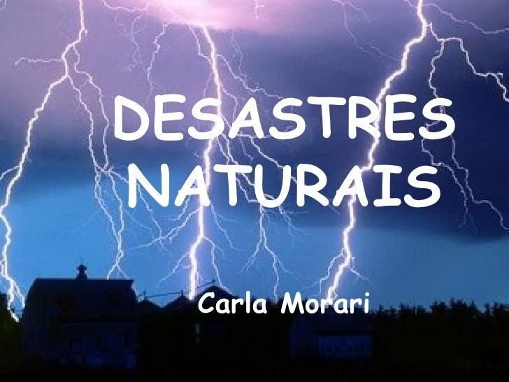 DESASTRES NATURAIS Carla Morari