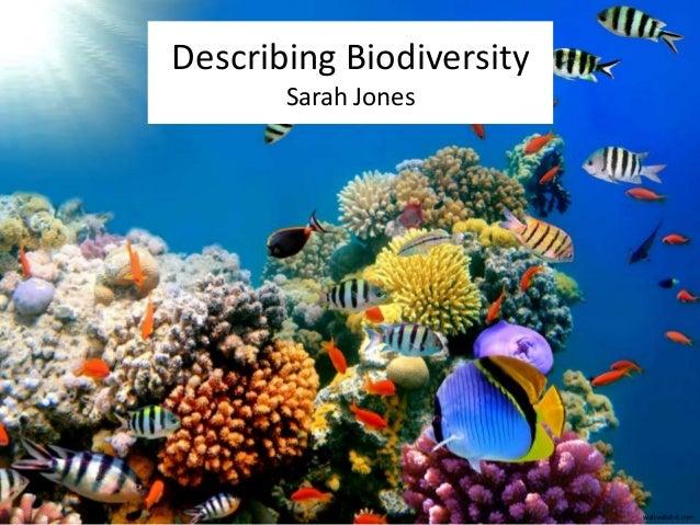 Describing Biodiversity  Sarah Jones  wallwidehd.com