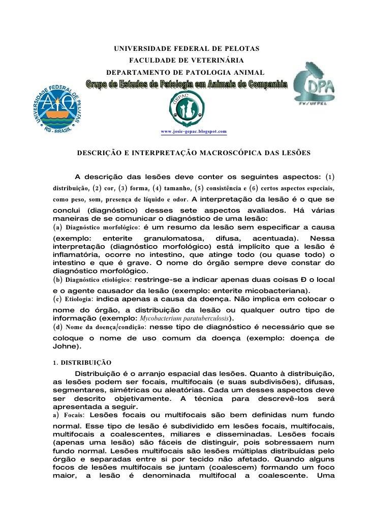 UNIVERSIDADE FEDERAL DE PELOTAS                          FACULDADE DE VETERINÁRIA                   DEPARTAMENTO DE PATOLO...