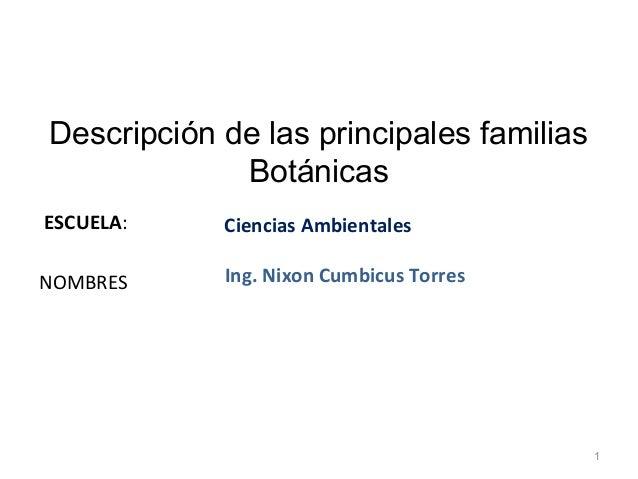 Descripción de las principales familias             BotánicasESCUELA:    Ciencias AmbientalesNOMBRES     Ing. Nixon Cumbic...