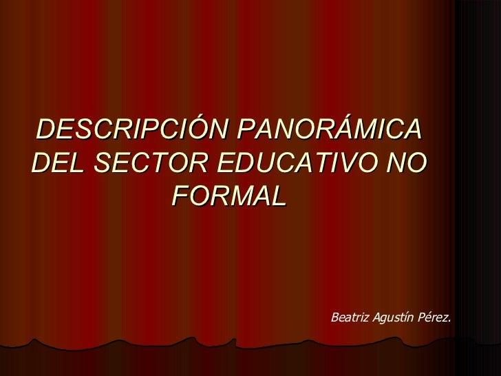 DESCRIPCIÓN PANORÁMICA DEL SECTOR EDUCATIVO NO FORMAL Beatriz Agustín Pérez.