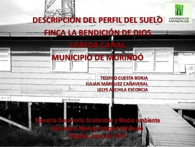 DESCRIPCIÓN DEL PERFIL DEL SUELOFINCA LA BENDICIÓN DE DIOSVEREDA CANALMUNICIPIO DE MURINDÓMaestría Desarrollo Sostenible y...