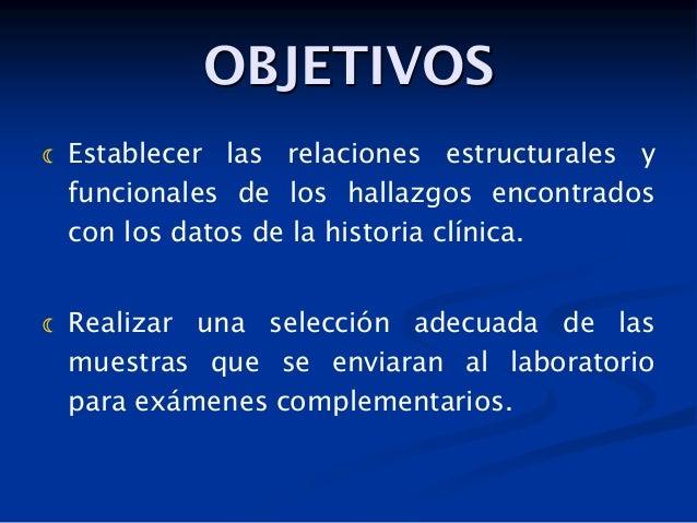 OBJETIVOS     Establecer las relaciones estructurales y funcionales de los hallazgos encontrados con los datos de la his...