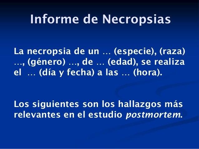 Informe de Necropsias La necropsia de un … (especie), (raza) …, (género) …, de … (edad), se realiza el … (día y fecha) a l...