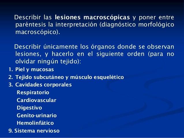 Describir las lesiones macroscópicas y poner entre paréntesis la interpretación (diagnóstico morfológico macroscópico). De...