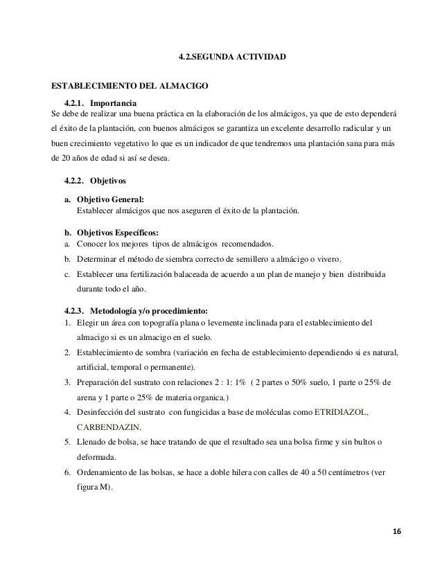 manejo agronomico del cafe pdf