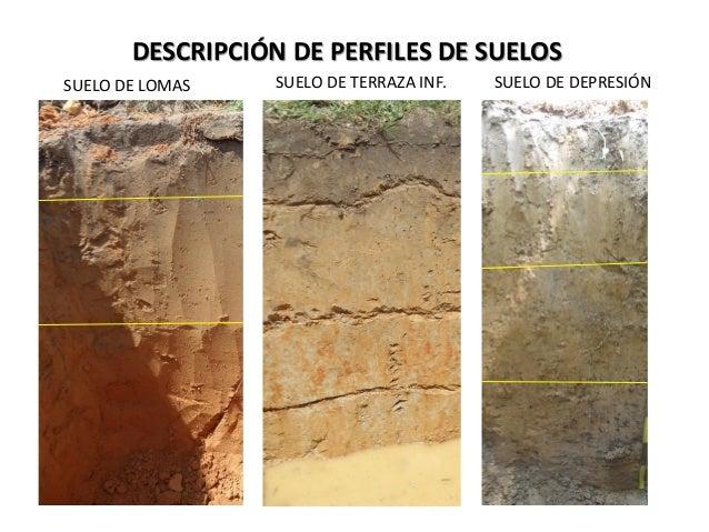 Descripci n de perfiles de suelos for Perfil del suelo wikipedia