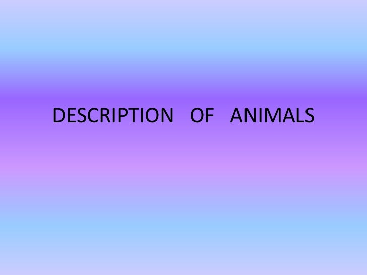 DESCRIPTION OF ANIMALS
