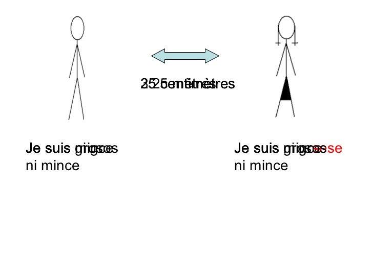 25 centim ètres Je suis mince Je suis mince 25 m ètres Je suis gros Je suis gros se 35 centim ètres Je suis ni gros ni min...