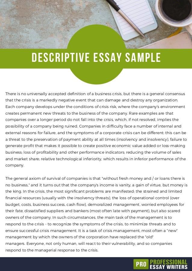 Essay on stylistics