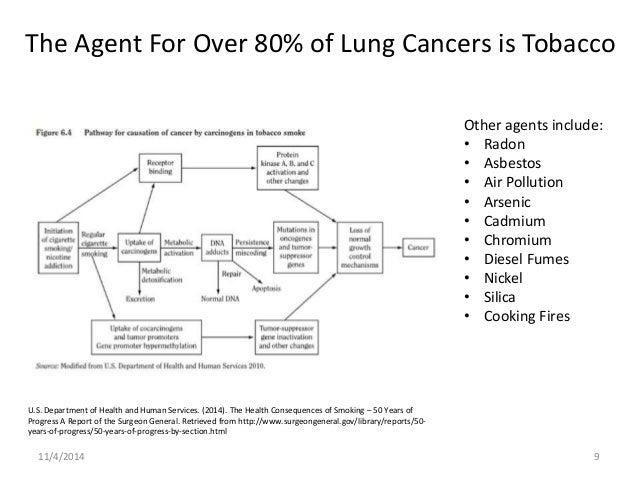 lung cancer essay