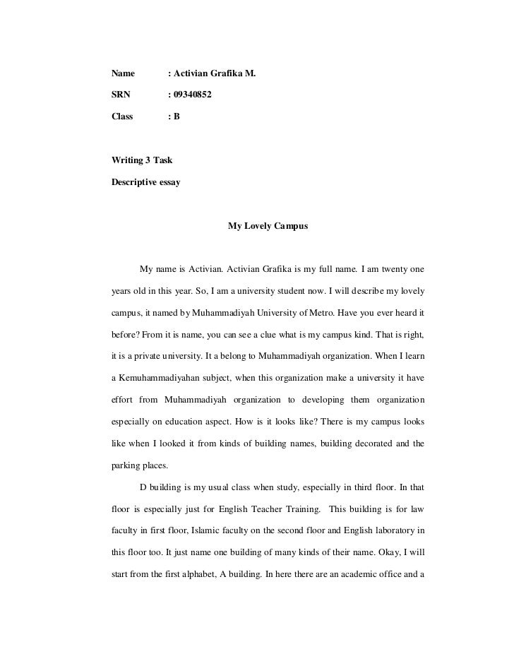 example of descriptive essays - Well Written Essay Examples