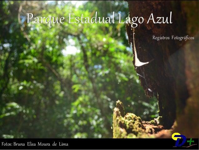 Parque Estadual Lago Azul  Registros Fotográficos  Fotos: Bruna Elisa Moura de Lima