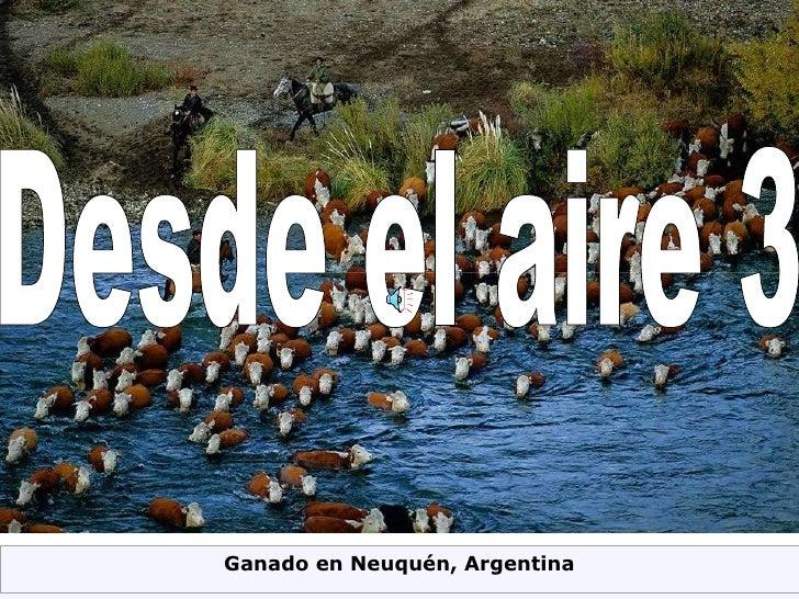 Desde el aire 3 Ganado en Neuquén, Argentina
