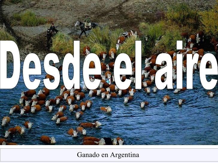 Desde el aire Ganado   en Argentina