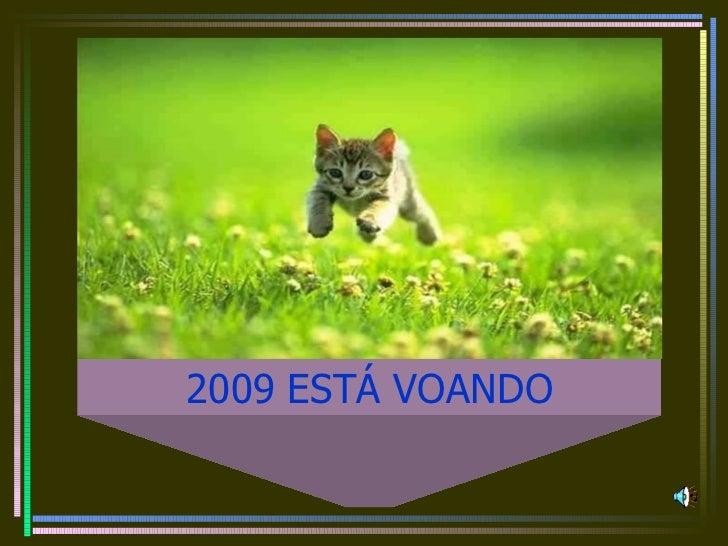 2009 ESTÁ VOANDO