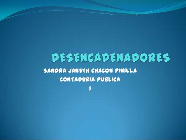 SANDRA JANETH CHACON PINILLA    CONTADURIA PUBLICA             1