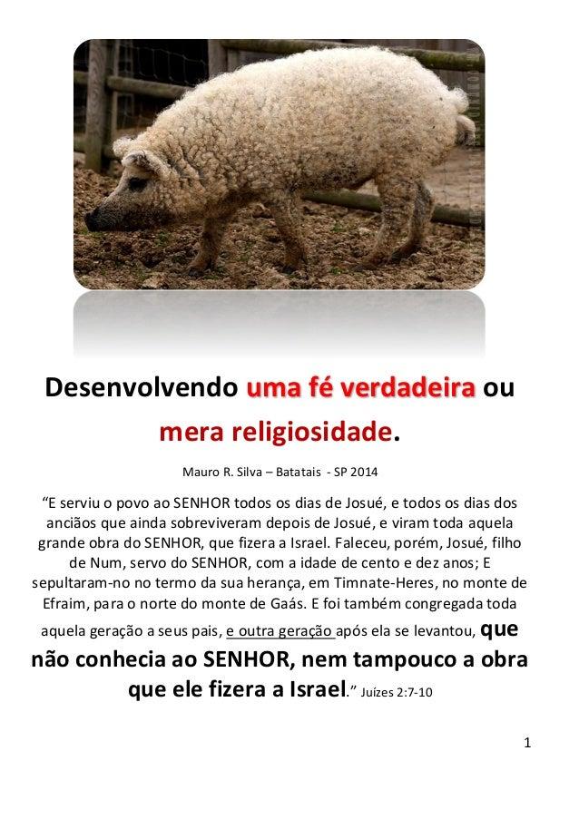"""1 Desenvolvendo uma fé verdadeira ou mera religiosidade. Mauro R. Silva – Batatais - SP 2014 """"E serviu o povo ao SENHOR to..."""