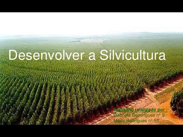 Desenvolver a Silvicultura <br />Traballho relalizado por : Gabriela Domingues nº 9 <br />Maria Rodrigues nº 13 <br />