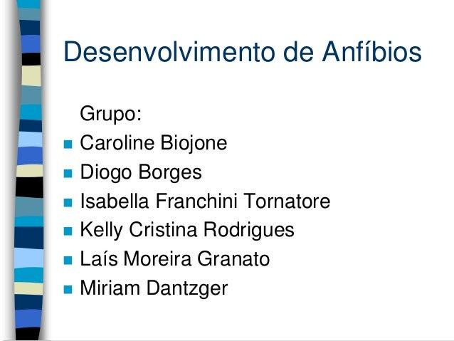 Desenvolvimento de Anfíbios Grupo:  Caroline Biojone  Diogo Borges  Isabella Franchini Tornatore  Kelly Cristina Rodri...