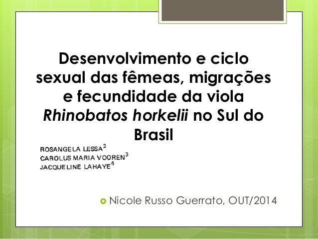 Desenvolvimento e ciclo  sexual das fêmeas, migrações  e fecundidade da viola  Rhinobatos horkelii no Sul do  Brasil   Ni...