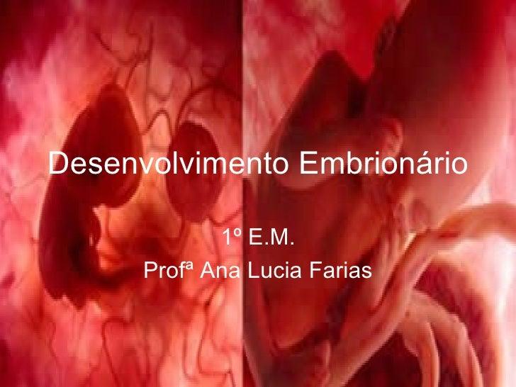 Desenvolvimento Embrionário 1º E.M. Profª Ana Lucia Farias