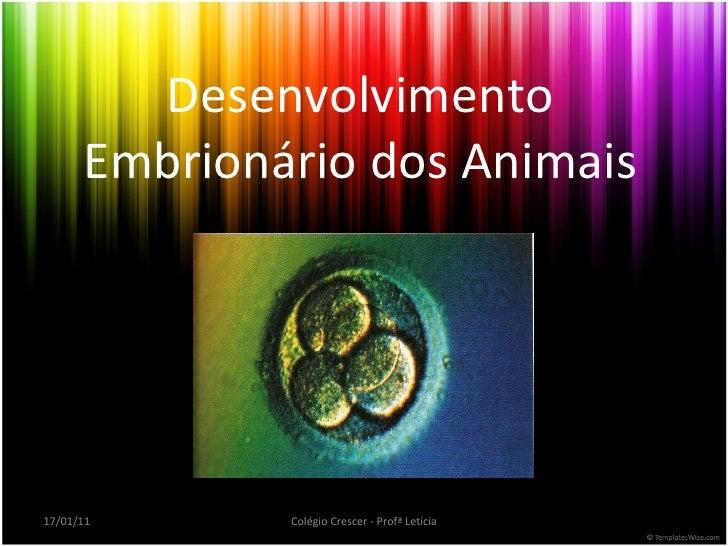 Desenvolvimento Embrionário dos Animais 17/01/11 Colégio Crescer - Profª Letícia