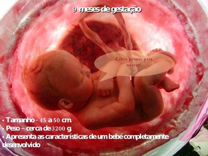 9 meses de gestação    Tamanho - 45 a 50 cm.    Peso – cerca de 3200 g.    Apresenta as características de um bebé comp...