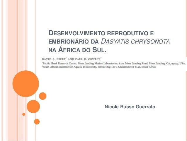 DESENVOLVIMENTO REPRODUTIVO E  EMBRIONÁRIO DA DASYATIS CHRYSONOTA  NA ÁFRICA DO SUL.  Nicole Russo Guerrato.