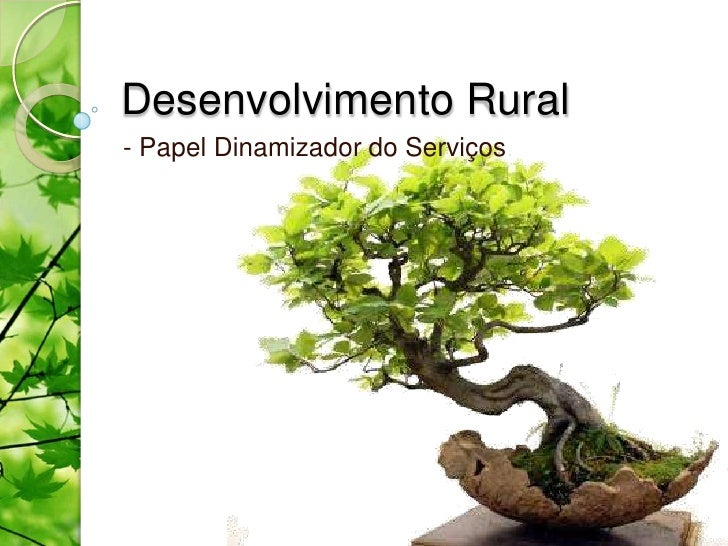 Desenvolvimento Rural- Papel Dinamizador do Serviços
