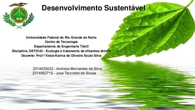 Desenvolvimento Sustentável  Universidade Federal do Rio Grande do Norte  Centro de Tecnologia  Departamento de Engenharia...