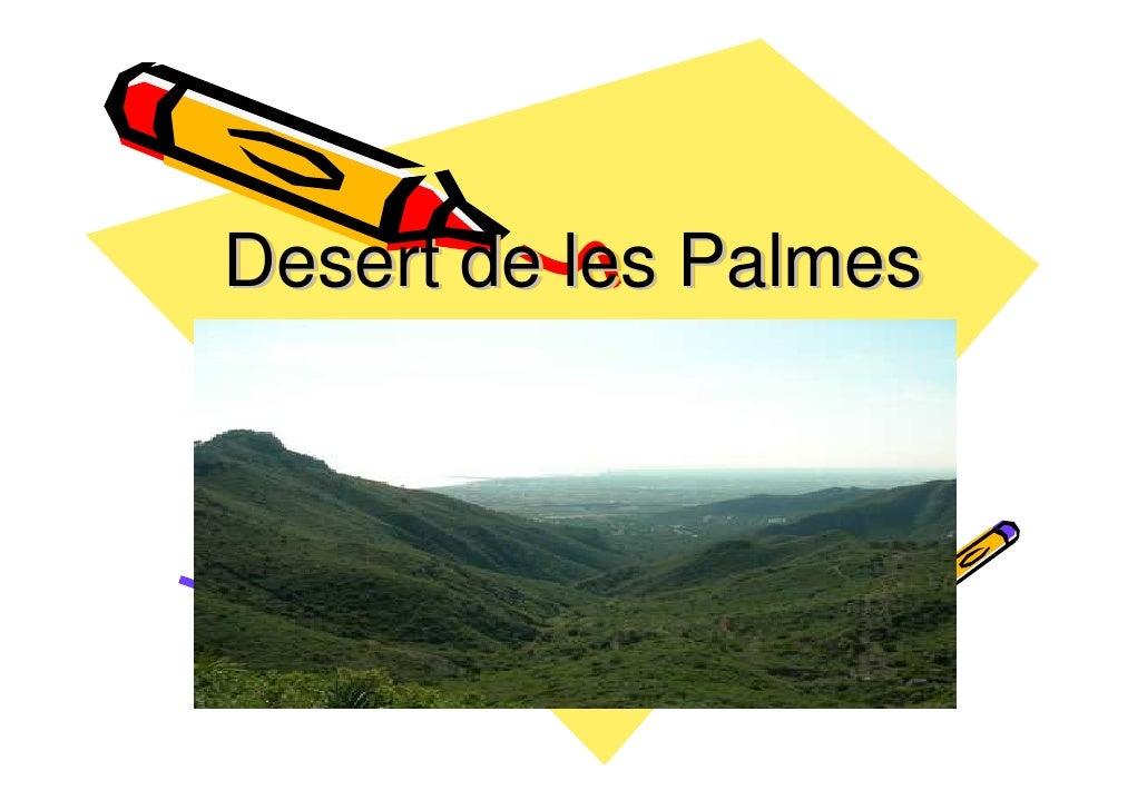 Desert de les Palmes