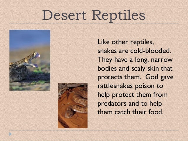 an analysis of the characteristics of deserts and the plants and animals which live in them This lesson will introduce the learners to the human and physical characteristics of desert regions around the world it will include plants and animals that inhabit those deserts and how people living in desert regions use resources wisely.