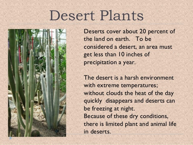 an analysis of the characteristics of deserts and the plants and animals which live in them Here is a slideshow of some of the plants and animals found in idaho forests   animals of the desert are mostly nocturnal, meaning that they do most of their.