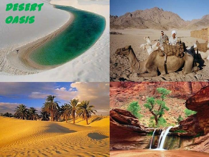 DESERT OASIS<br />