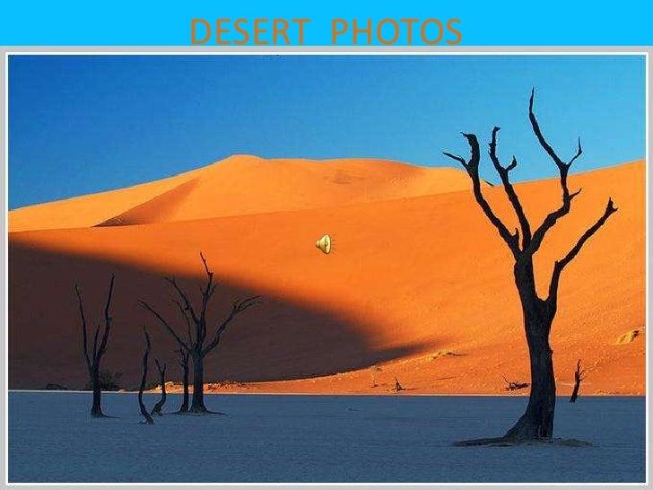 DESERT  PHOTOS<br />