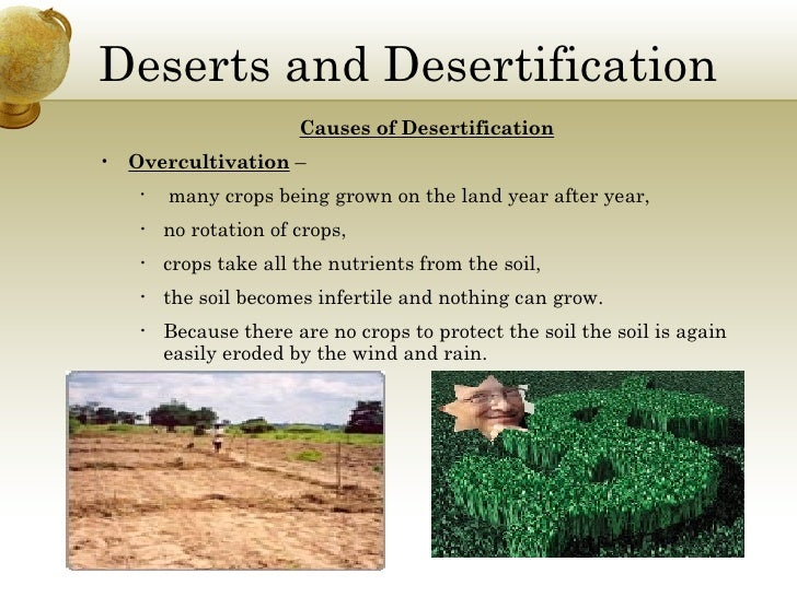 causes of desertification Reforestation gets at one of the root causes of desertification and is not just a treatment of the symptoms environmental organizations [54] work in places where deforestation and desertification are contributing to extreme poverty .