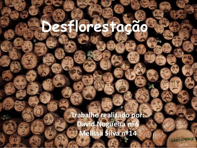 Desflorestação   Trabalho realizado por:     David Nogueira nº6      Melissa Silva nº14