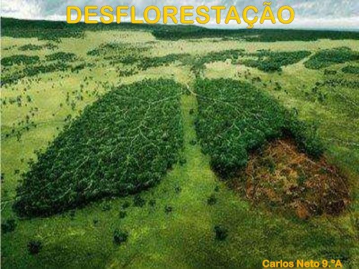 DESFLORESTAÇÃO<br />Carlos Neto 9.ºA <br />