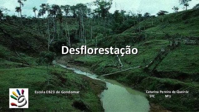DesflorestaçãoEscola EB23 de Gondomar       Catarina Pereira de Queiróz                                5ºC       Nº1