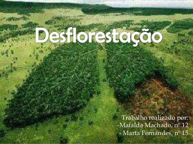 Trabalho realizado por: -Mafalda Machado, nº 12 - Marta Fernandes, nº 15