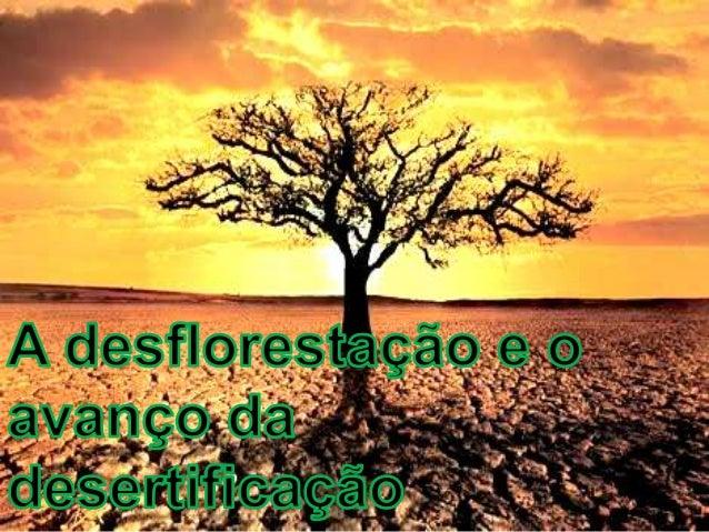 A desflorestaçãoAs florestas cobrem cerca de um terço da superfície terrestre edesempenham funções importantes para o equi...
