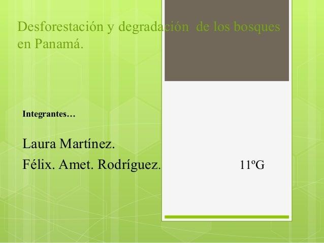 Desforestación y degradación de los bosques en Panamá. Integrantes… Laura Martínez. Félix. Amet. Rodríguez. 11ºG