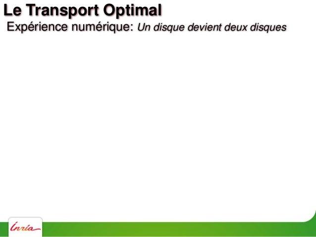 Expérience numérique: Armadillo devient une sphère Le Transport Optimal