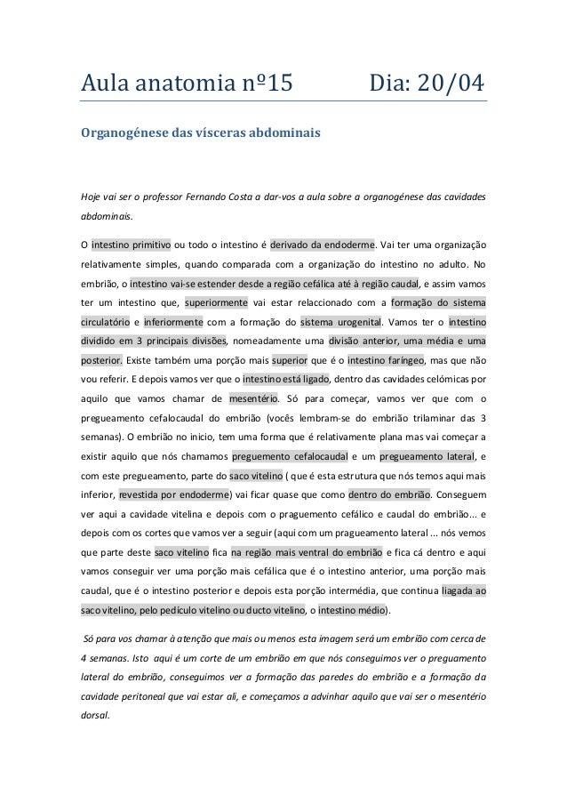 Aula anatomia nº15 Dia: 20/04 Organogénese das vísceras abdominais Hoje vai ser o professor Fernando Costa a dar-vos a aul...
