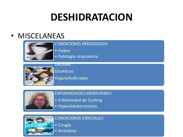 DESHIDRATACION• MISCELANEAS          CONDICIONES PATOLOGICAS          • Fiebre          • Patología respiratoria          ...